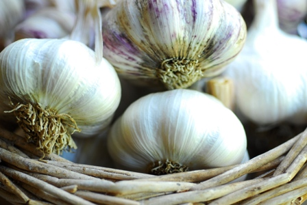 PRE ORDER NOW Park Hill Garlic